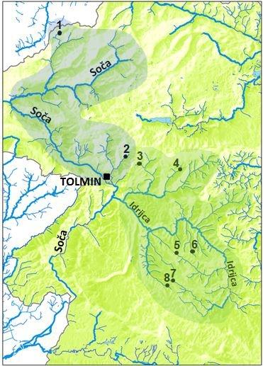 Генетически чистые популяции мраморной форели в Словении. 1-Predelica (уничтожено оползнем), 2-Zadlaščica, 3-Lipovšček, 4-Huda grapa, 5-Studenc, 6-Sevnica, 7-Idrijca, 8-Trebuščica.